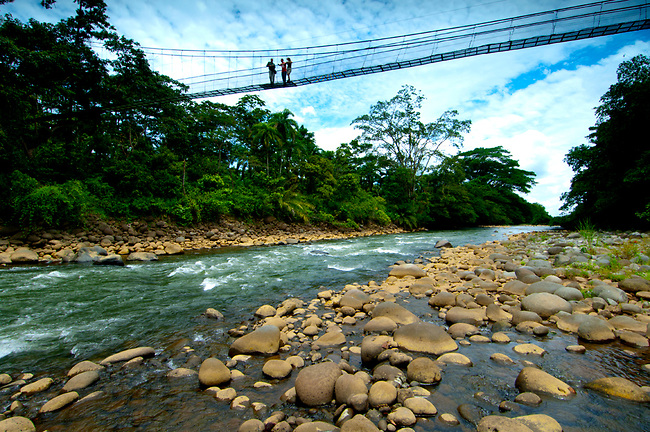 Costa Rica Nature Guide