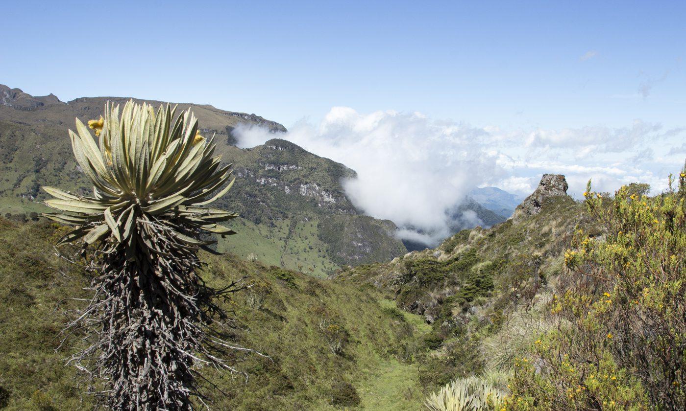 The Hidden Colombian Trek